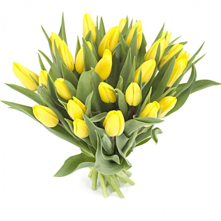 Букет из желто белых тюльпанов, любимому своими руками