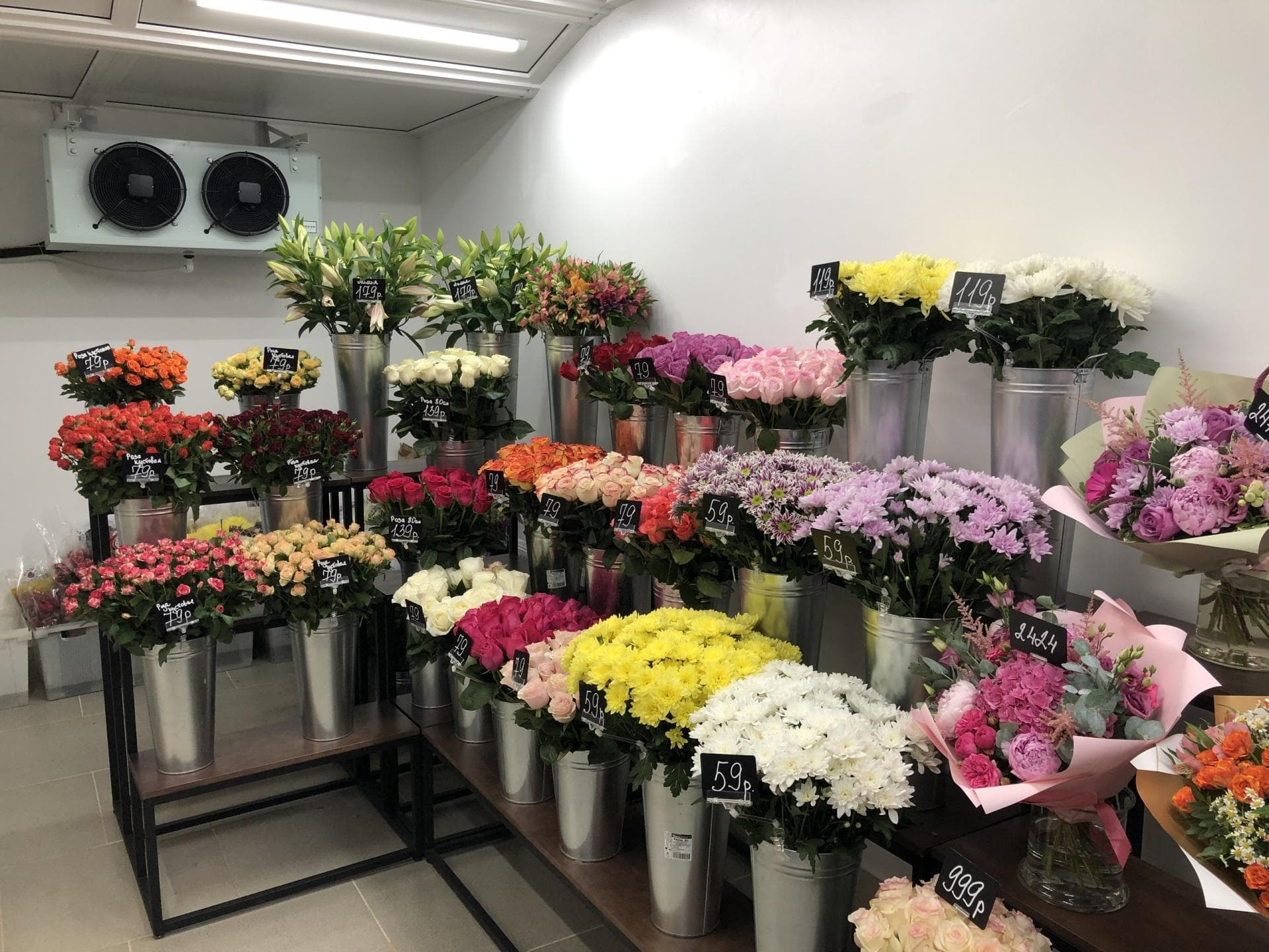 Оптовая база цветов нивки, киев, цветов